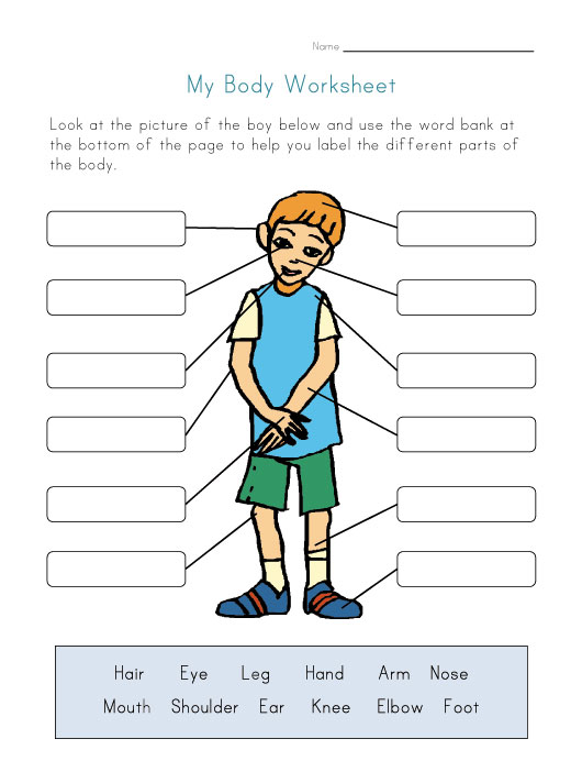 Label Body Parts Worksheet for Kids